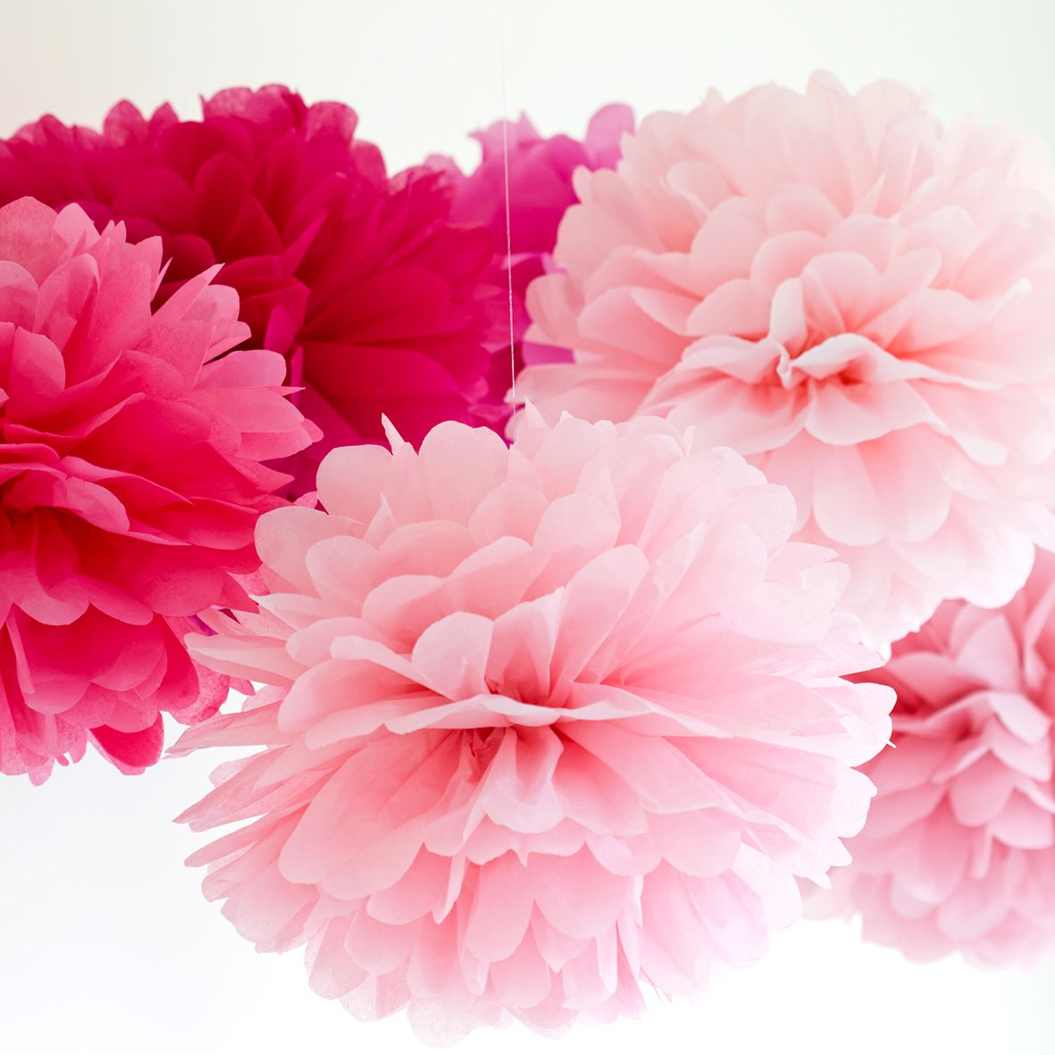 Pom Pom and Honeycomb Paper Decorations category image