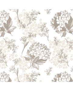 Hortensia (Ivory) Decorative Paper - Zoom