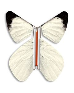 Large White Magic Flyer Butterfly