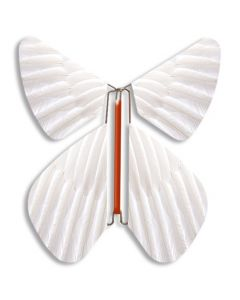 White Magic Flyer Butterfly