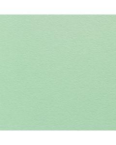 Colorplan Sandgrain Park Green A4 Card