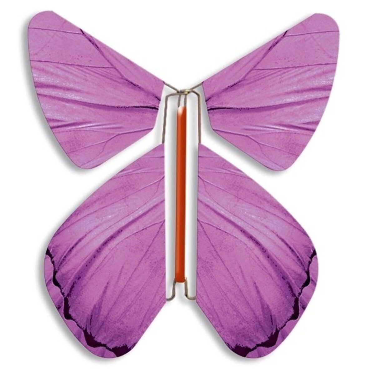 Fashion Violet Pink Magic Flyer Butterfly