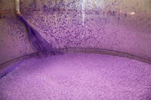 Paper pulp and water is mixed together in large vats.