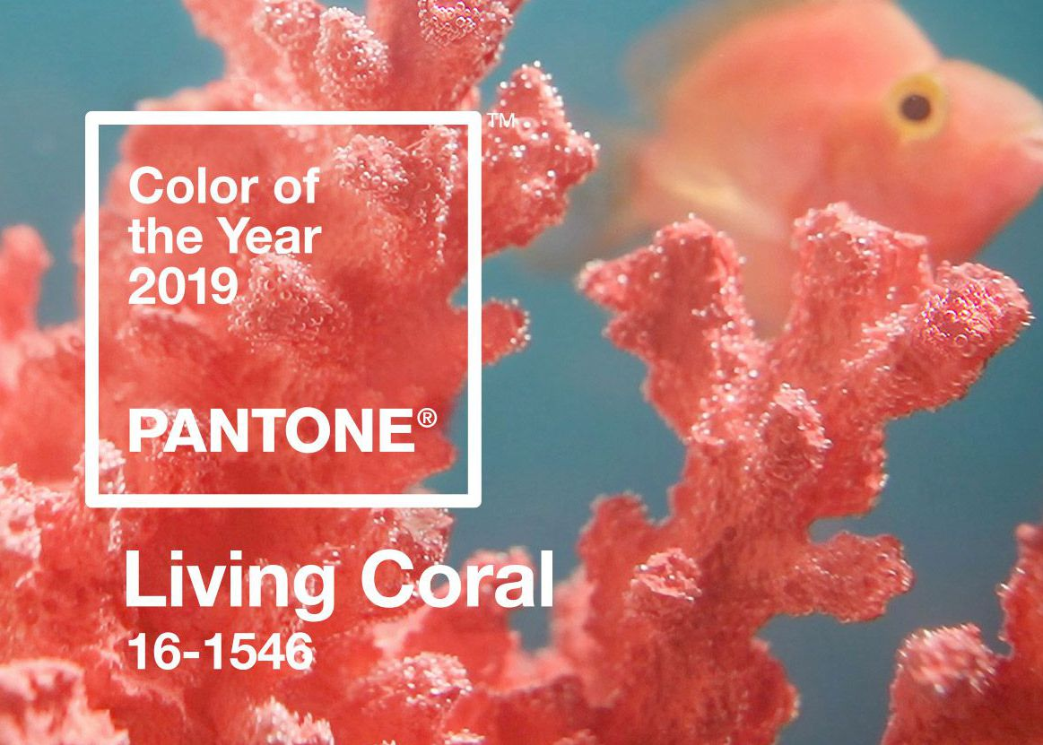 PANTONE® colour of the year 2019